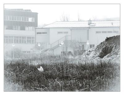 """Subhash """"Mödlinger Architekturen – WIFI #7551"""""""