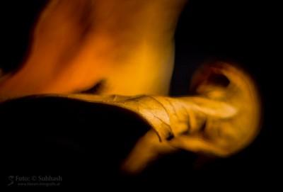"""""""Tod du wirst meine letzte Liebe sein #1583"""""""